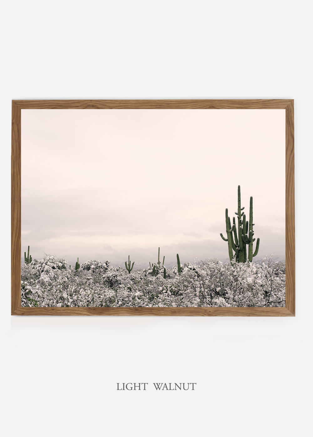 nomat_lightwalnutframe-saguaroNo.7-wildercalifornia-art-wallart-cactusprint-homedecor-prints-arizona-botanical-artwork-interiordesign.jpg