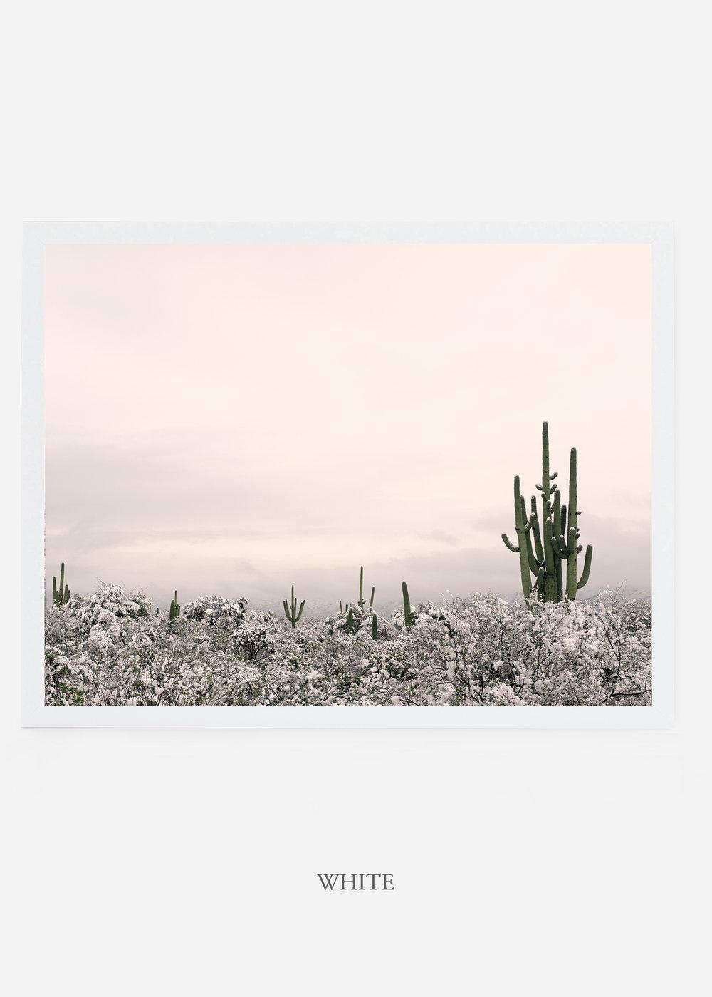 nomat_whiteframe-saguaroNo.7-wildercalifornia-art-wallart-cactusprint-homedecor-prints-arizona-botanical-artwork-interiordesign.jpg