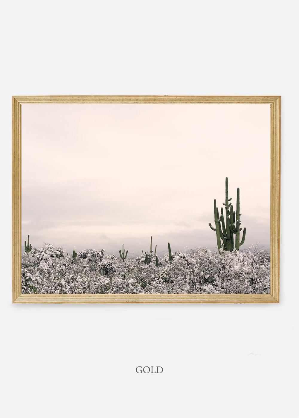 nomat-goldframe-saguaroNo.7-wildercalifornia-art-wallart-cactusprint-homedecor-prints-arizona-botanical-artwork-interiordesign.jpg