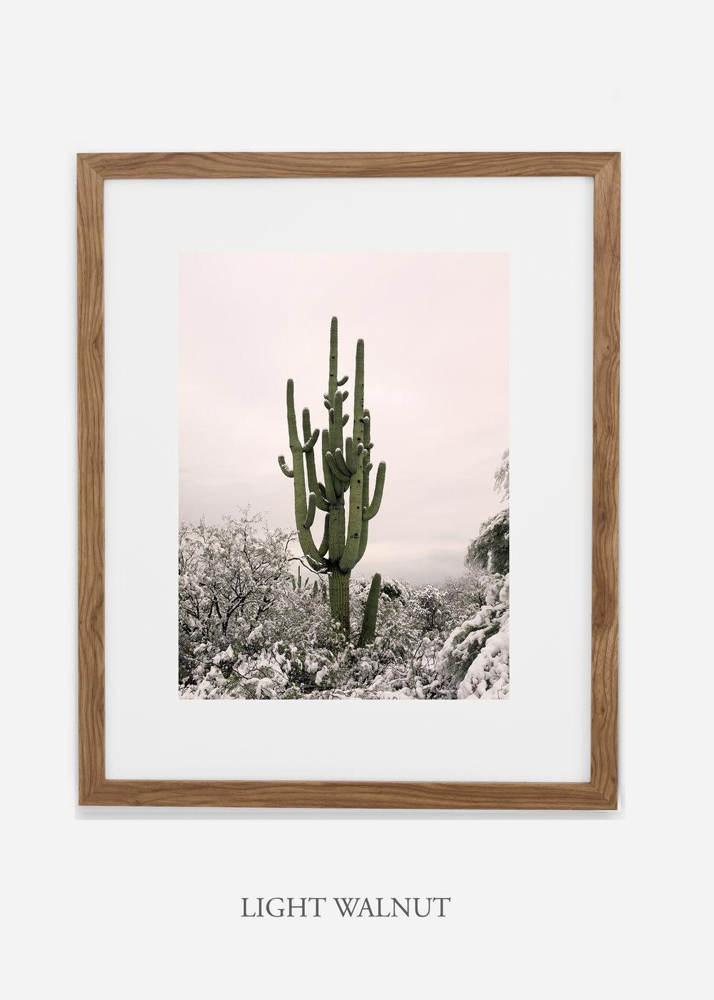 lightwalnutframe-saguaroNo.8-wildercalifornia-art-wallart-cactusprint-homedecor-prints-arizona-botanical-artwork-interiordesign.jpg