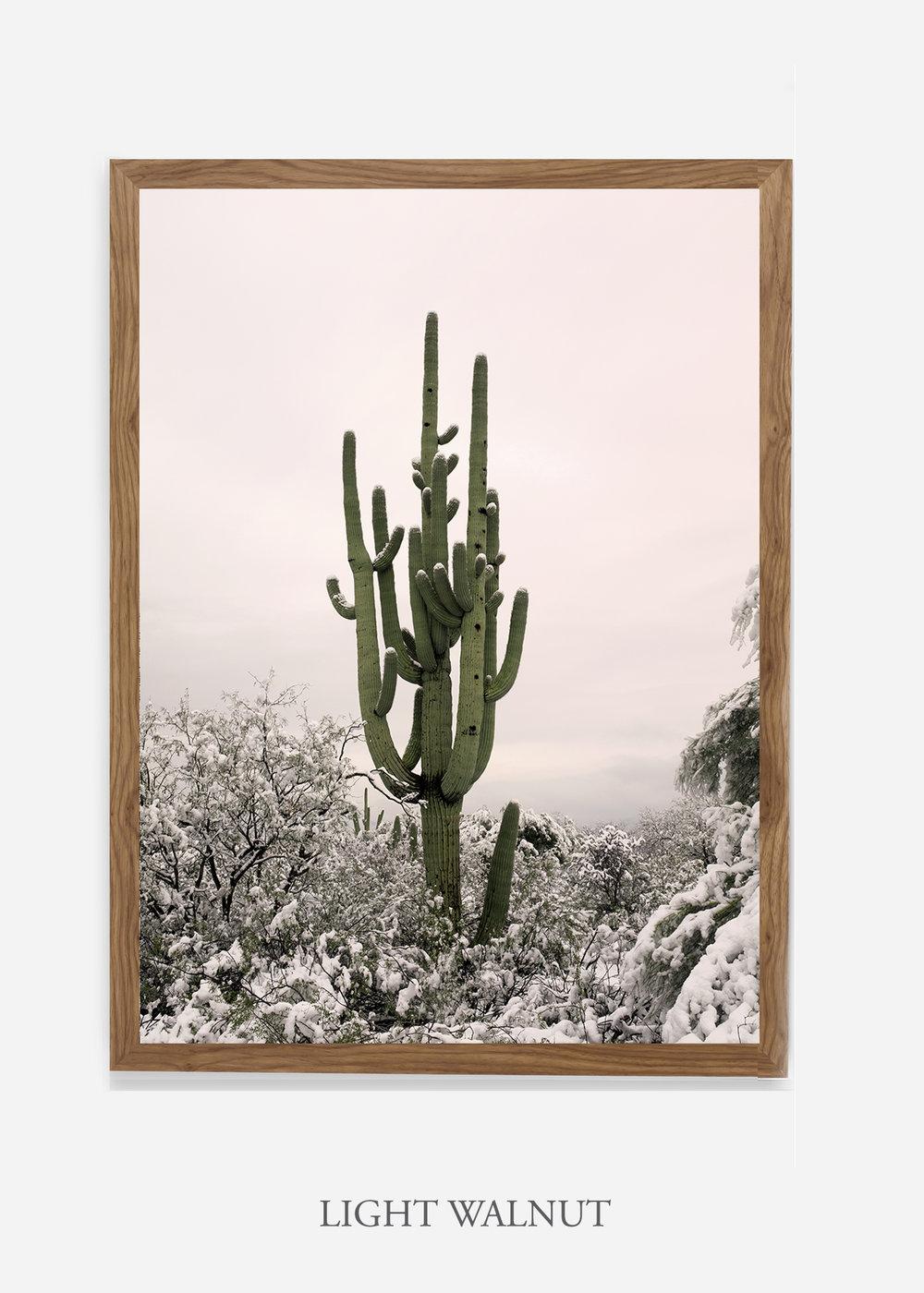 nomat-lightwalnutframe-saguaroNo.8-wildercalifornia-art-wallart-cactusprint-homedecor-prints-arizona-botanical-artwork-interiordesign.jpg
