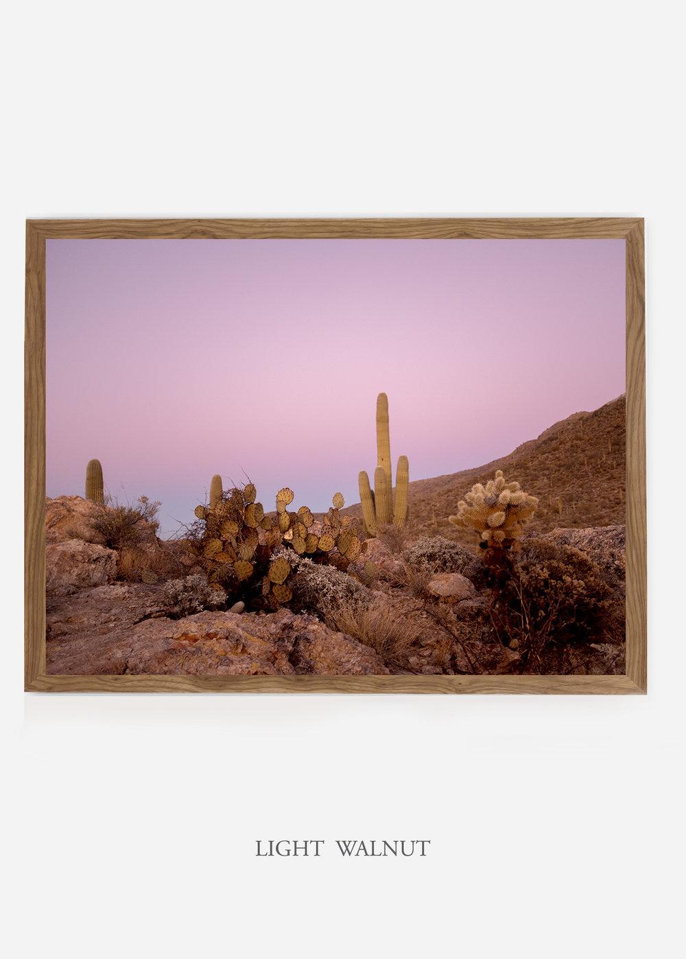 nomat_lightwalnutframe-saguaroNo.9-wildercalifornia-art-wallart-cactusprint-homedecor-prints-arizona-botanical-artwork-interiordesign.jpg