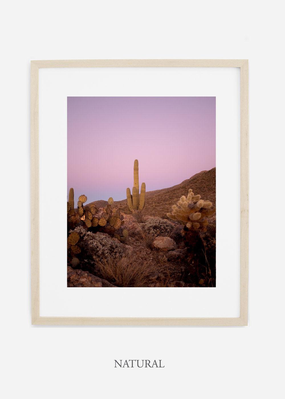 naturalframe-saguaroNo.10-wildercalifornia-art-wallart-cactusprint-homedecor-prints-arizona-botanical-artwork-interiordesign.jpg
