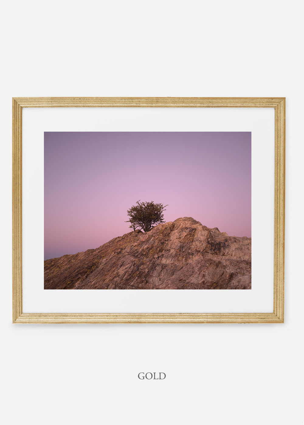 goldframe-saguaroNo.11-wildercalifornia-art-wallart-cactusprint-homedecor-prints-arizona-botanical-artwork-interiordesign.jpg
