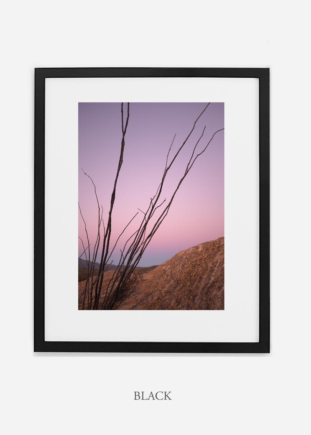 blackframe-saguaroNo.12-wildercalifornia-art-wallart-cactusprint-homedecor-prints-arizona-botanical-artwork-interiordesign.jpg