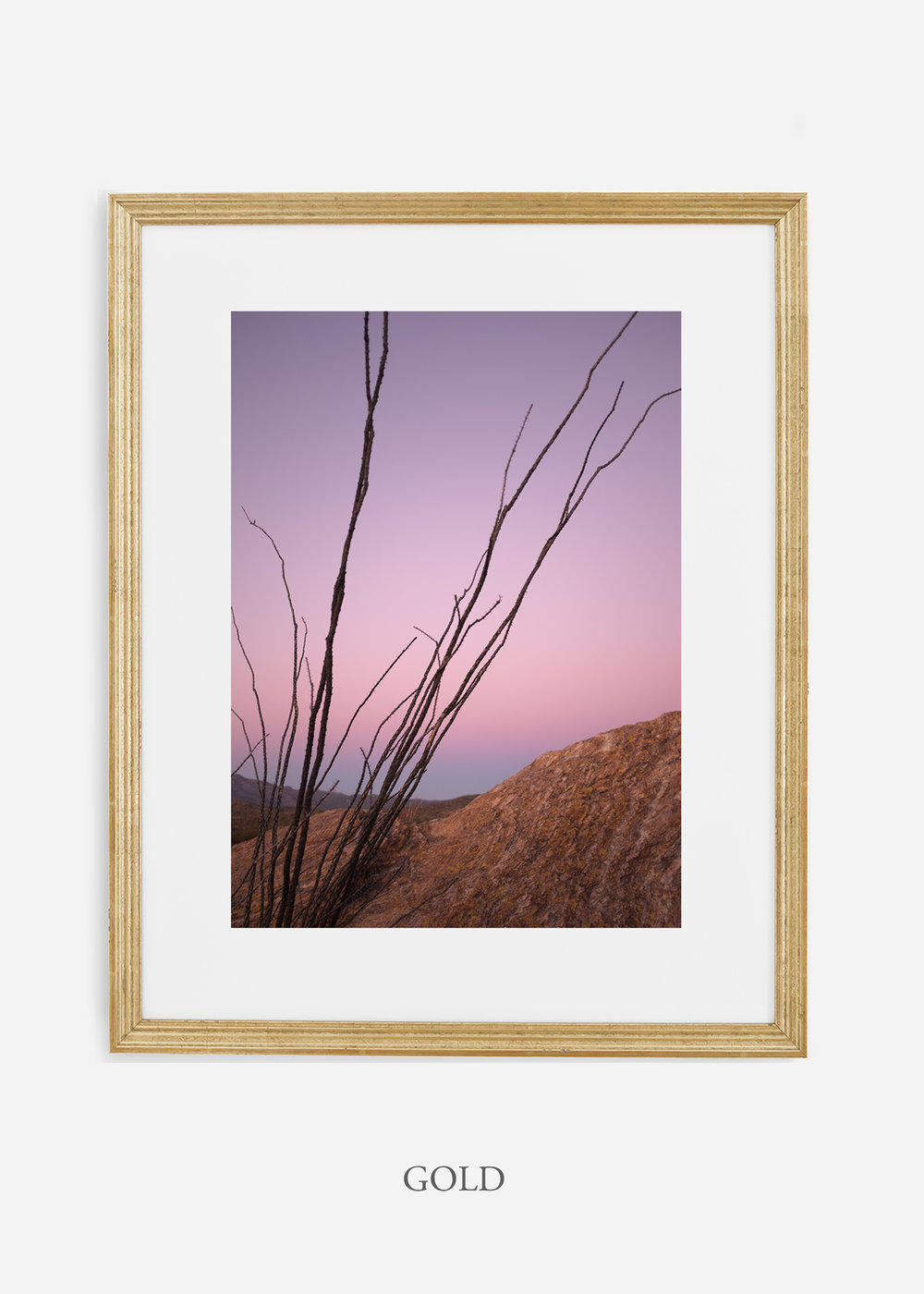 goldframe-saguaroNo.12-wildercalifornia-art-wallart-cactusprint-homedecor-prints-arizona-botanical-artwork-interiordesign.jpg