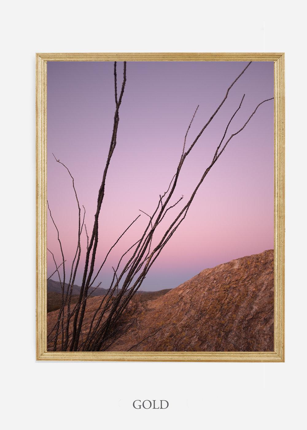 nomat-goldframe-saguaroNo.12-wildercalifornia-art-wallart-cactusprint-homedecor-prints-arizona-botanical-artwork-interiordesign.jpg