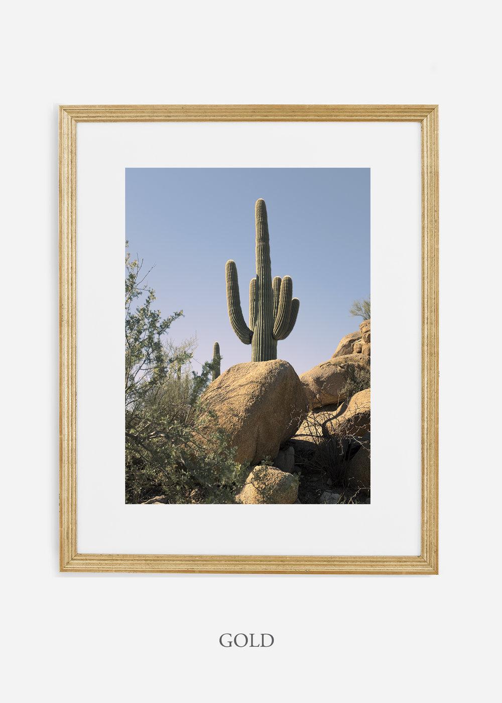 goldframe-saguaroNo.14-wildercalifornia-art-wallart-cactusprint-homedecor-prints-arizona-botanical-artwork-interiordesign.jpg