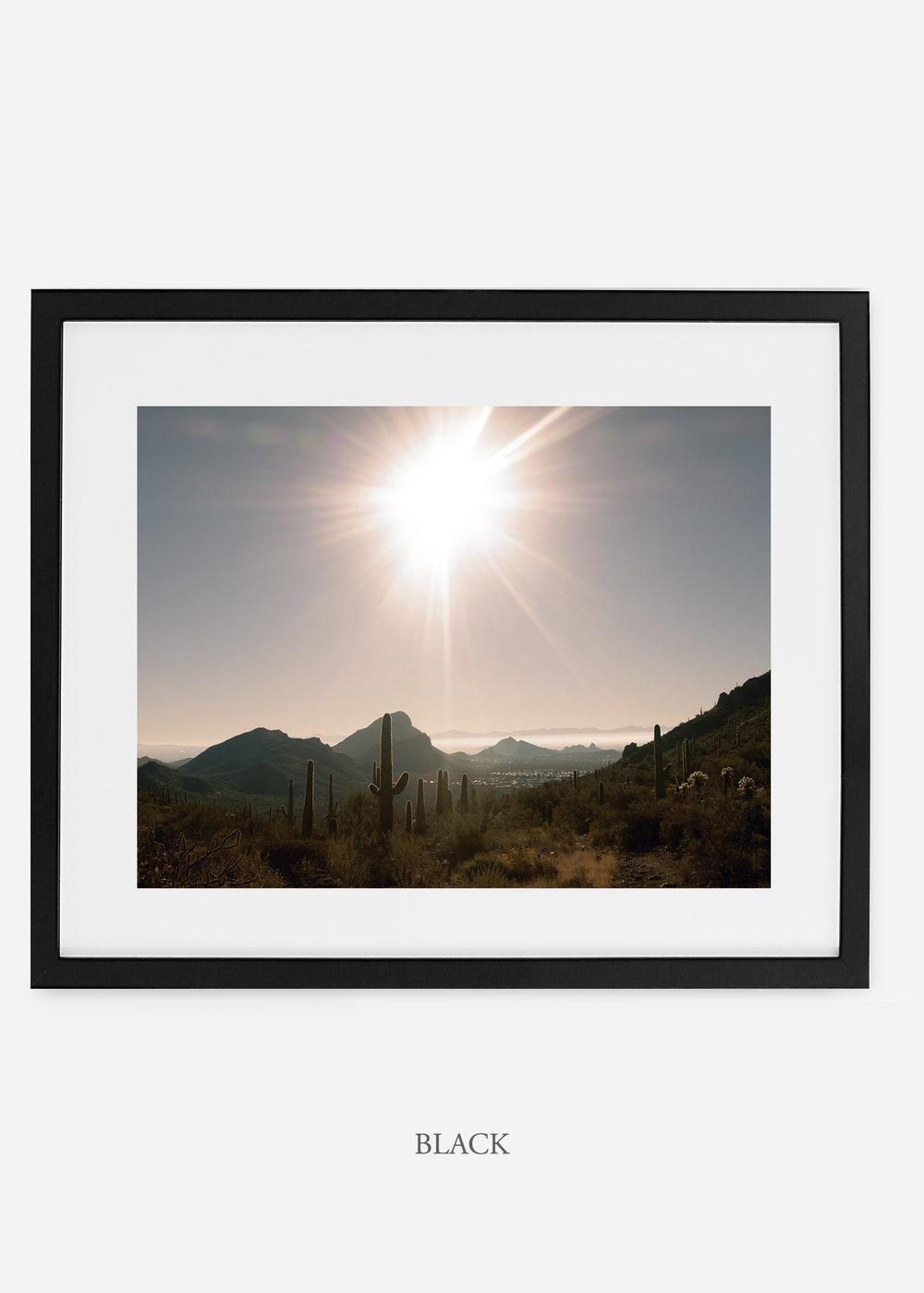 blackframe-saguaroNo.15-wildercalifornia-art-wallart-cactusprint-homedecor-prints-arizona-botanical-artwork-interiordesign.jpg