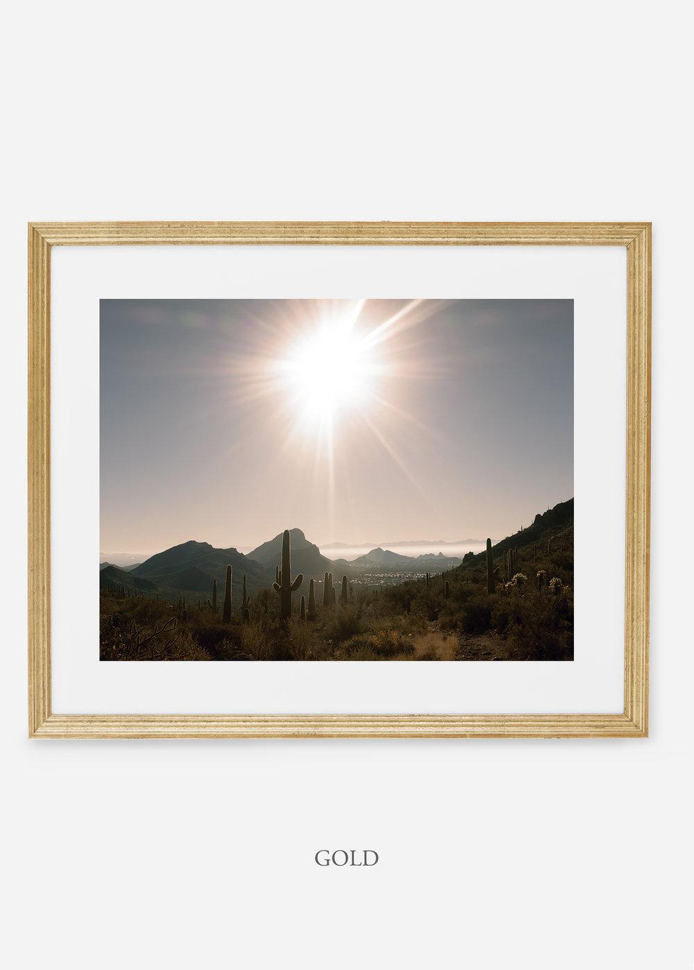 goldframe-saguaroNo.15-wildercalifornia-art-wallart-cactusprint-homedecor-prints-arizona-botanical-artwork-interiordesign.jpg