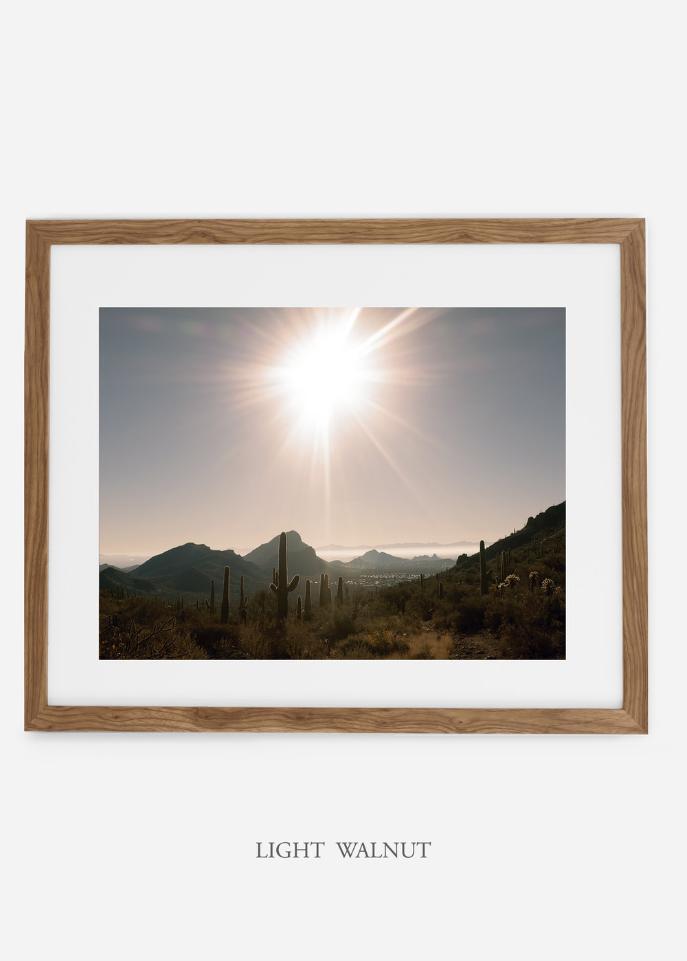 lightwalnutframe-saguaroNo.15-wildercalifornia-art-wallart-cactusprint-homedecor-prints-arizona-botanical-artwork-interiordesign.jpg