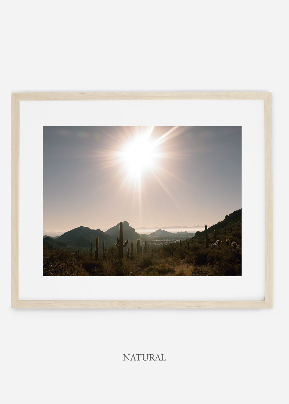 naturalframe-saguaroNo.15-wildercalifornia-art-wallart-cactusprint-homedecor-prints-arizona-botanical-artwork-interiordesign.jpg