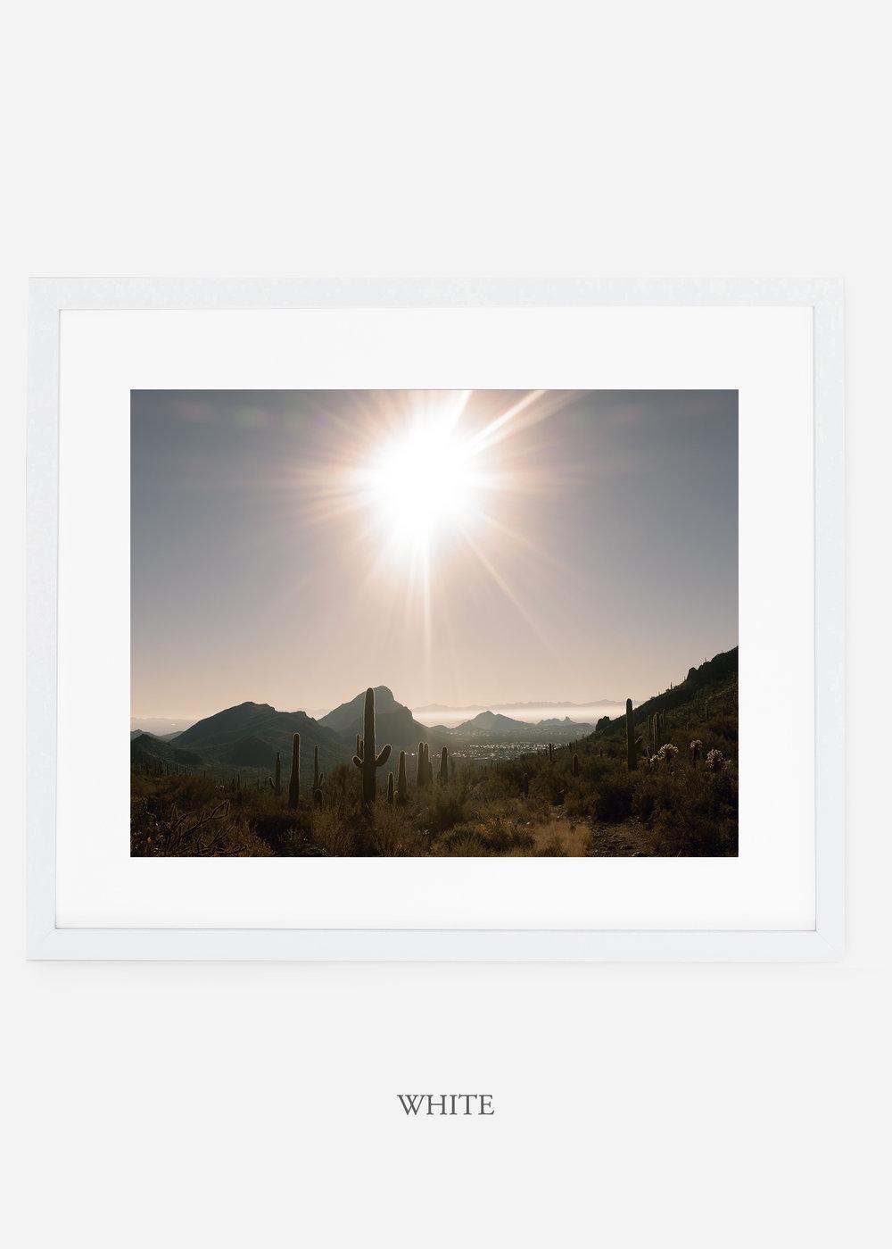 whiteframe-saguaroNo.15-wildercalifornia-art-wallart-cactusprint-homedecor-prints-arizona-botanical-artwork-interiordesign.jpg