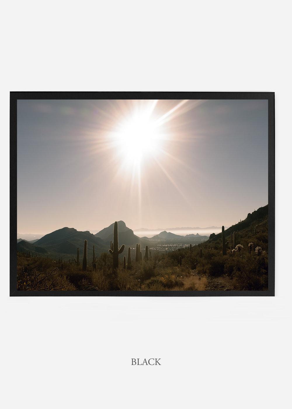 nomat_blackframe-saguaroNo.15-wildercalifornia-art-wallart-cactusprint-homedecor-prints-arizona-botanical-artwork-interiordesign.jpg