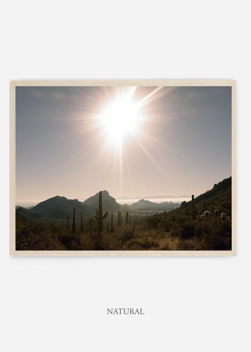 nomat_naturalframe-saguaroNo.15-wildercalifornia-art-wallart-cactusprint-homedecor-prints-arizona-botanical-artwork-interiordesign.jpg