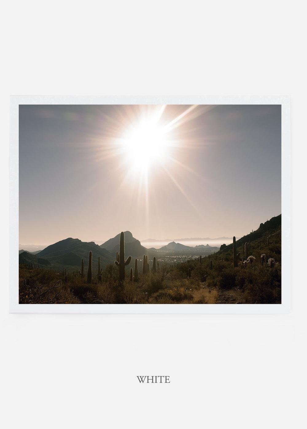nomat_whiteframe-saguaroNo.15-wildercalifornia-art-wallart-cactusprint-homedecor-prints-arizona-botanical-artwork-interiordesign.jpg