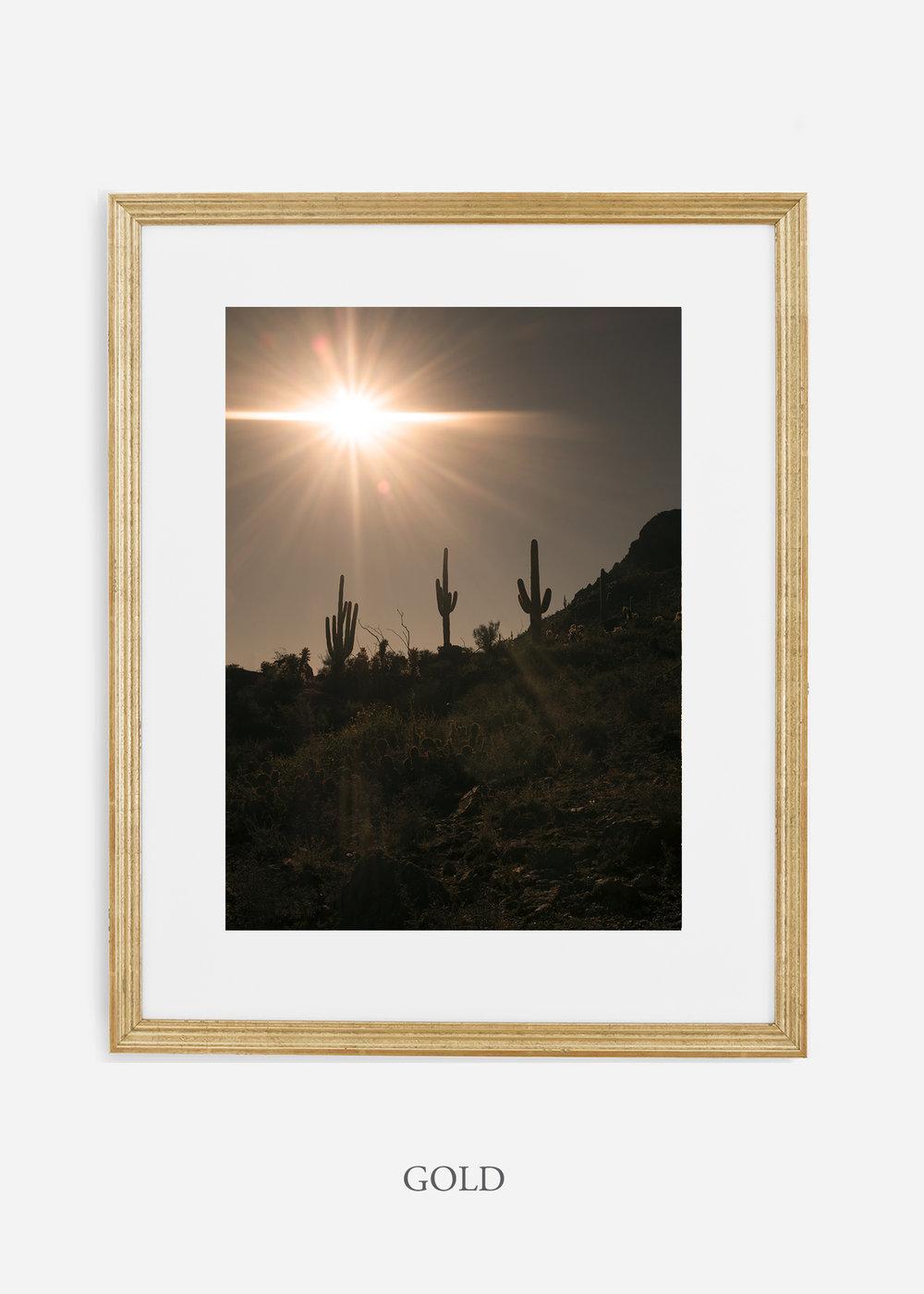 goldframe-saguaroNo.16-wildercalifornia-art-wallart-cactusprint-homedecor-prints-arizona-botanical-artwork-interiordesign.jpg