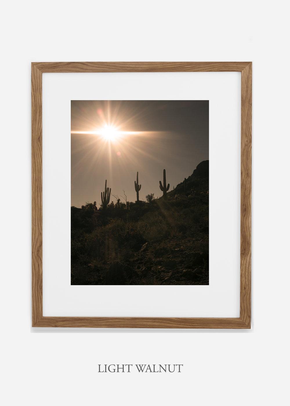 lightwalnutframe-saguaroNo.16-wildercalifornia-art-wallart-cactusprint-homedecor-prints-arizona-botanical-artwork-interiordesign.jpg