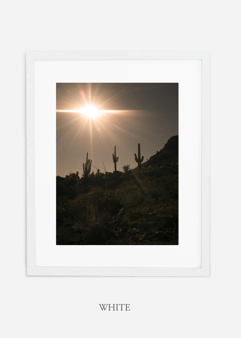 whiteframe-saguaroNo.16-wildercalifornia-art-wallart-cactusprint-homedecor-prints-arizona-botanical-artwork-interiordesign.jpg