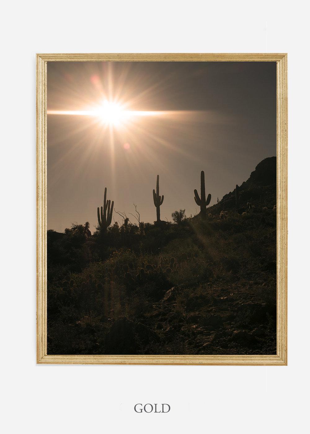 nomat-goldframe-saguaroNo.16-wildercalifornia-art-wallart-cactusprint-homedecor-prints-arizona-botanical-artwork-interiordesign.jpg