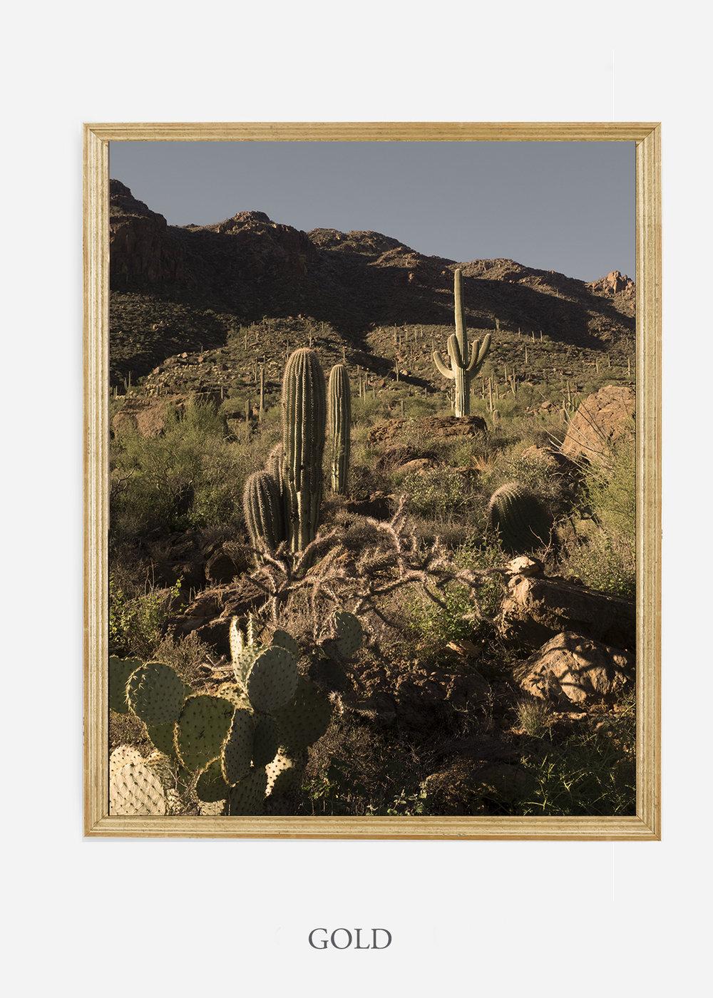 nomat-goldframe-saguaroNo.18-wildercalifornia-art-wallart-cactusprint-homedecor-prints-arizona-botanical-artwork-interiordesign.jpg