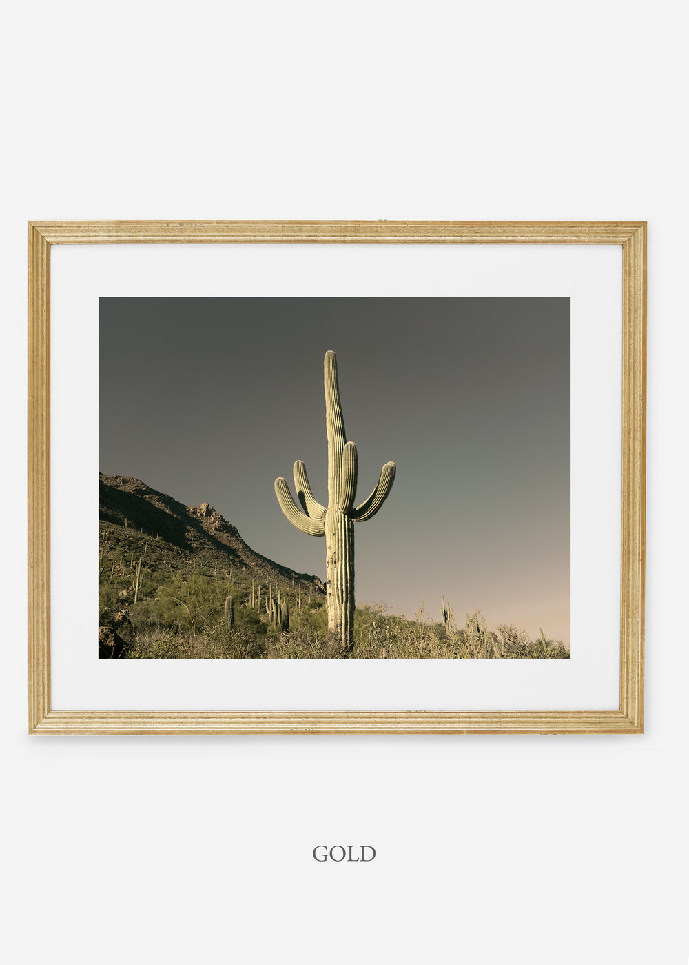goldframe-saguaroNo.19-wildercalifornia-art-wallart-cactusprint-homedecor-prints-arizona-botanical-artwork-interiordesign.jpg