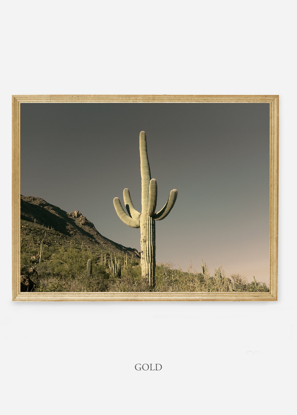 nomat-goldframe-saguaroNo.19-wildercalifornia-art-wallart-cactusprint-homedecor-prints-arizona-botanical-artwork-interiordesign.jpg