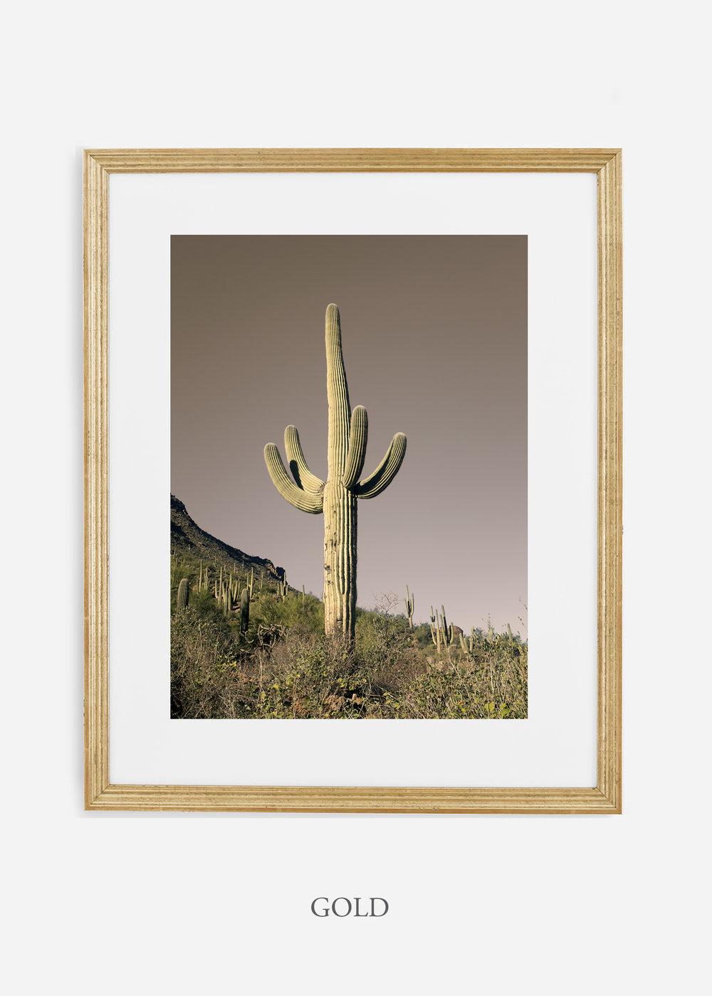 goldframe-saguaroNo.20-wildercalifornia-art-wallart-cactusprint-homedecor-prints-arizona-botanical-artwork-interiordesign.jpg