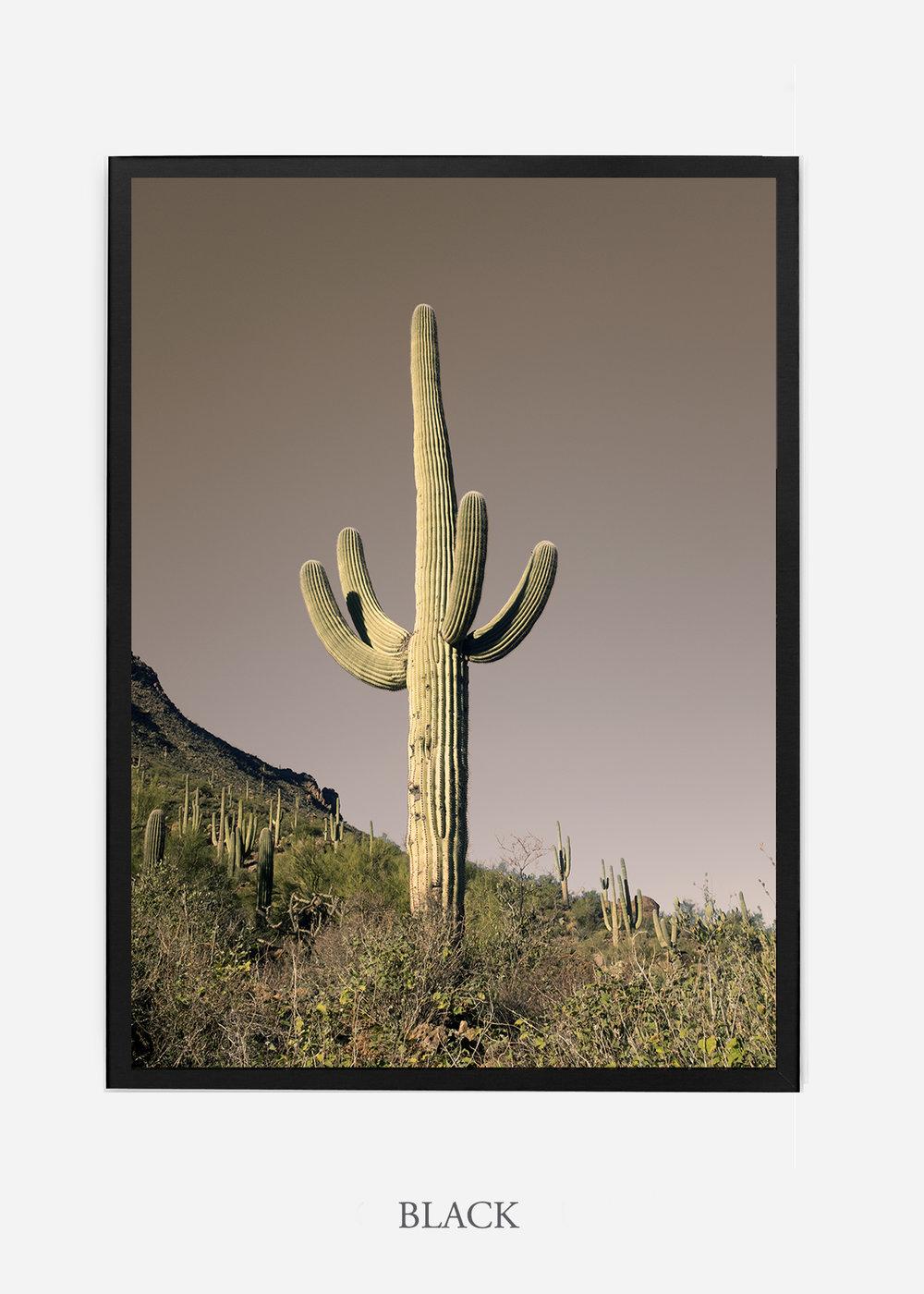 nomat-blackframe-saguaroNo.20-wildercalifornia-art-wallart-cactusprint-homedecor-prints-arizona-botanical-artwork-interiordesign.jpg