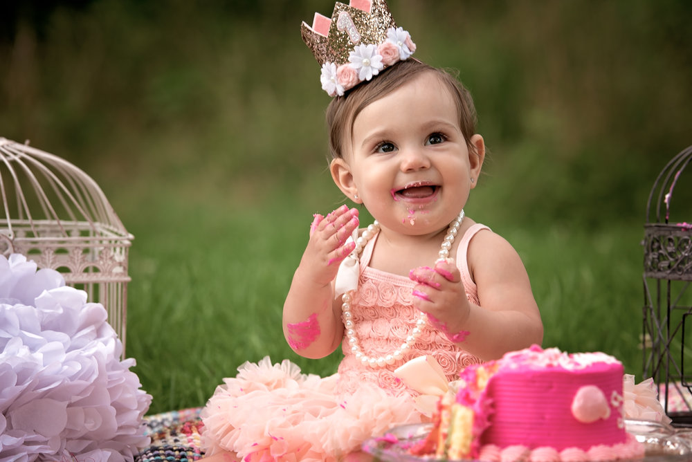 Cake Smash/Birthday Session - 1 hour session 30 digital imagesPrint releaseComplimentary Smash CakeProps included$425.00