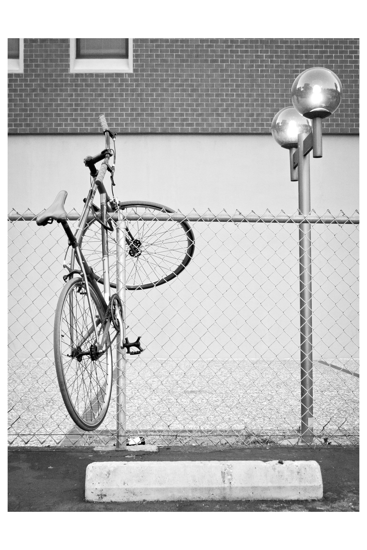 bikeonfence_12x18.jpg