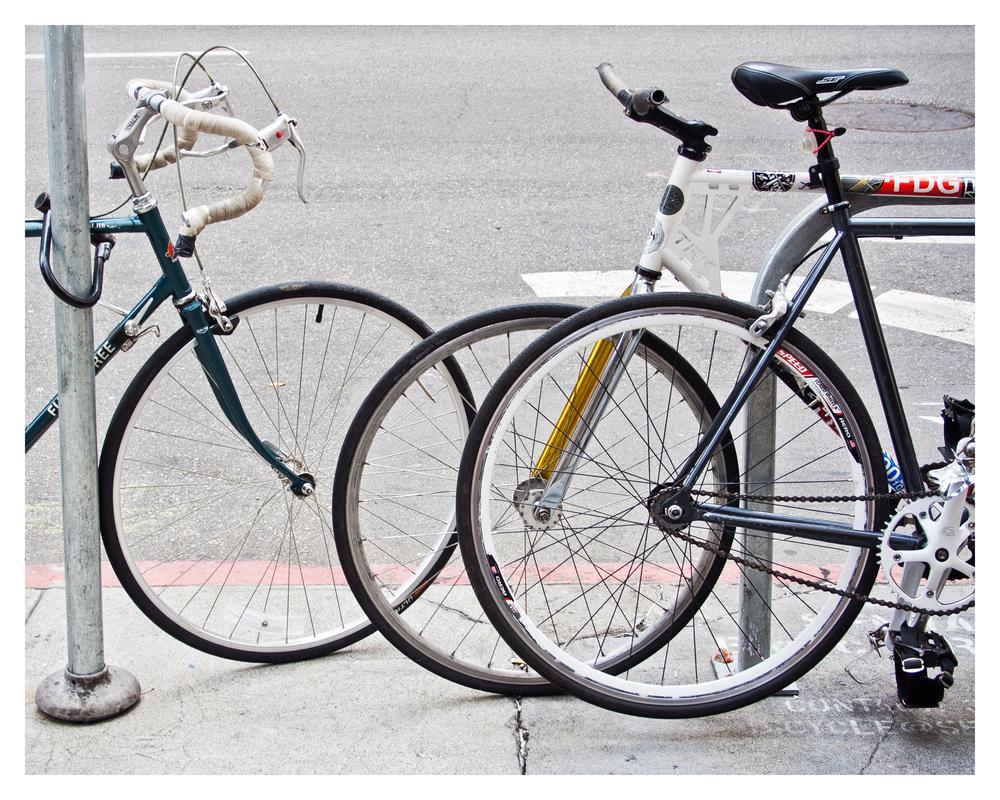 biketrio_8x10.jpg