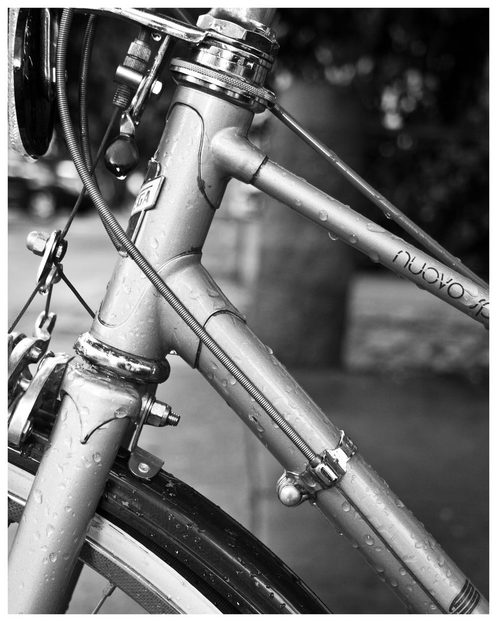 colest.bike16x20.jpg