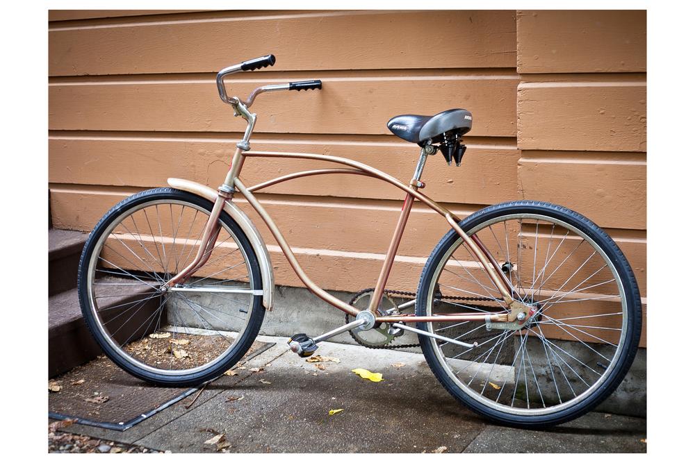sjbrownbike_12x18.jpg