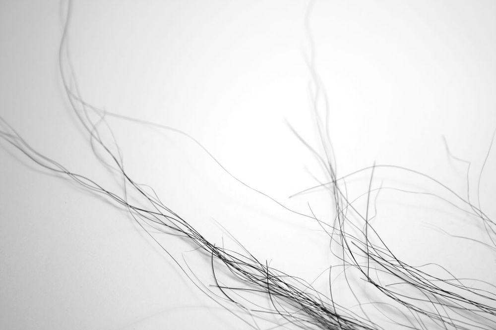 horsehair.jpg