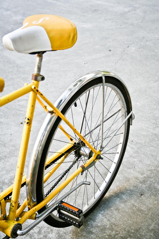 20080506-_MG_1925.jpg