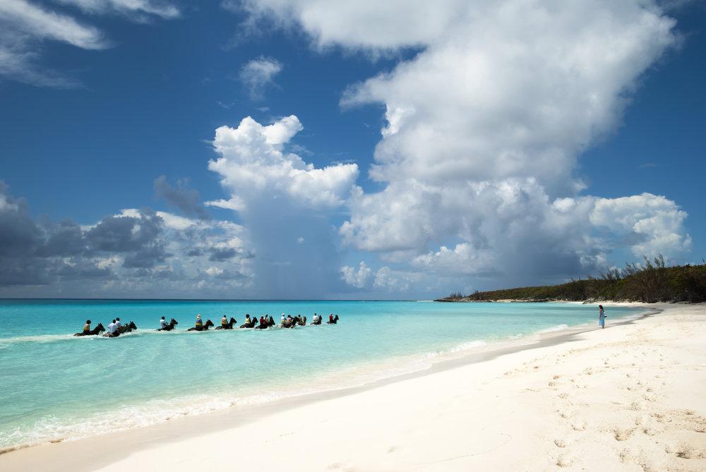 Day on horseback - Eleuthera Island