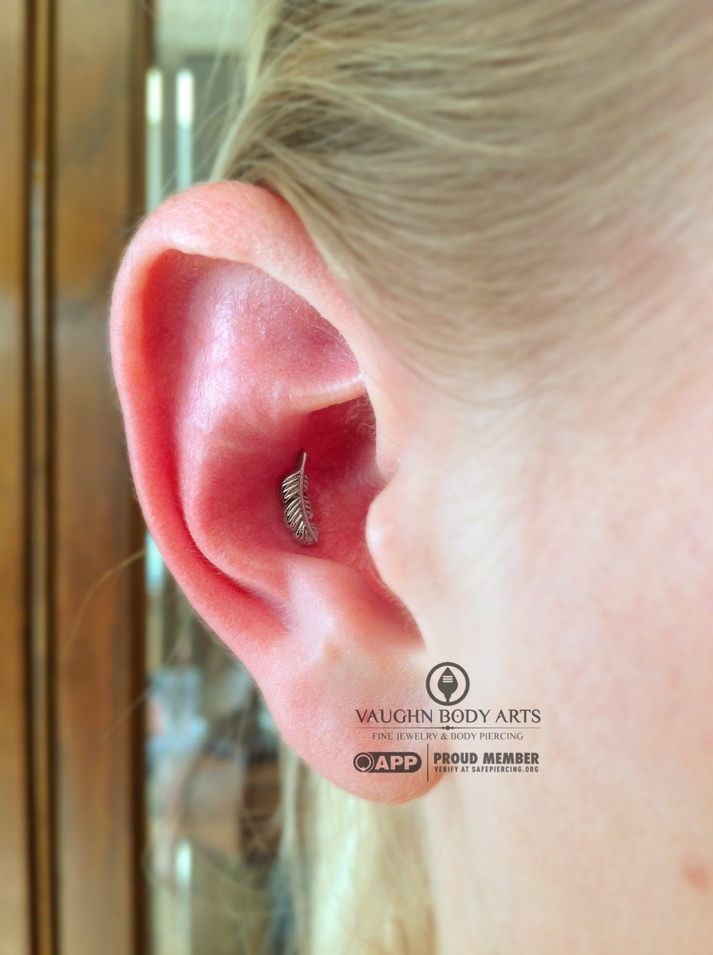 Conch piercing with a white gold feather end from BVLA.