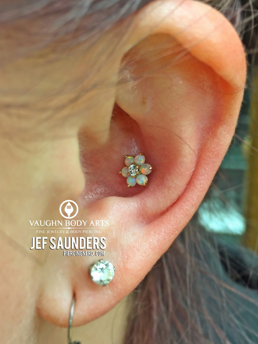 Conch piercing done by our friend and guest piercer Jef Saunders featuring an 18k yellow gold flower from Anatometal.
