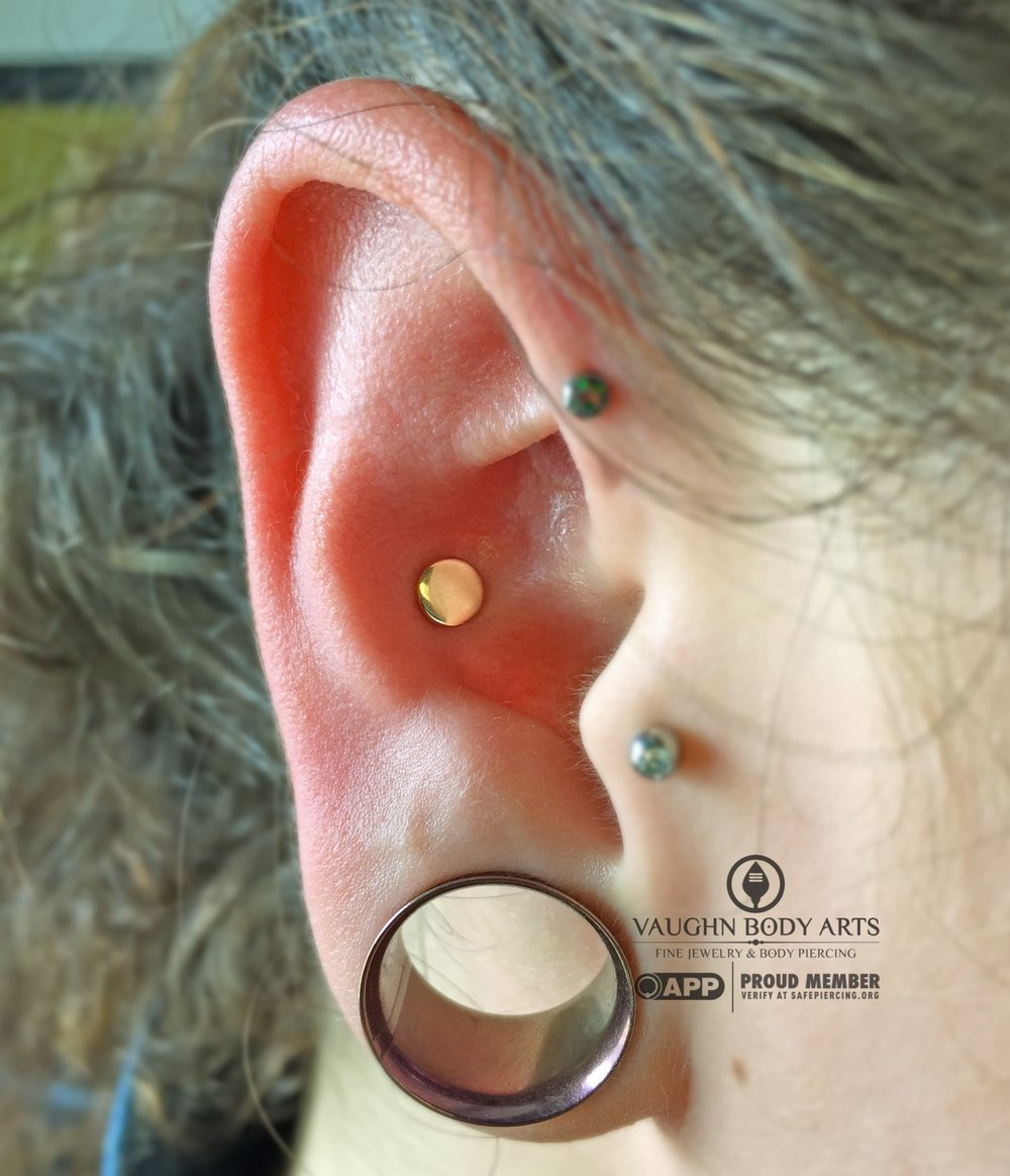 Conch piercing featuring an 18k rose gold disk from Anatometal.