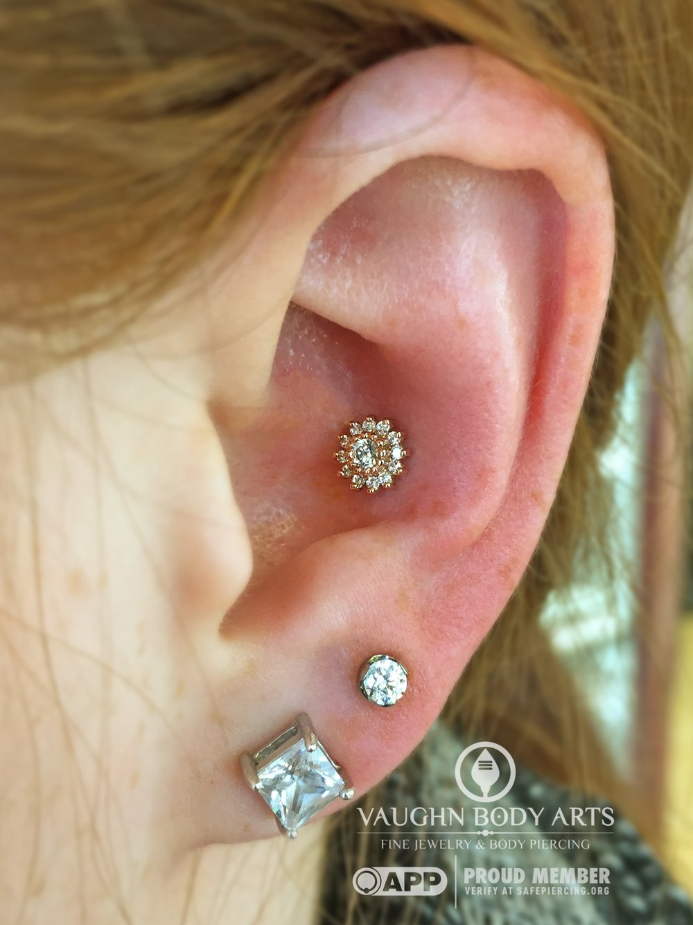 "Conch piercing featuring a 14k yellow gold and cz ""Rose"" end from Anatometal."