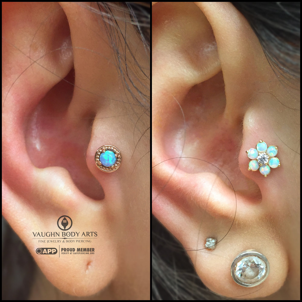 "Friendship tragus piercings! On the left: 14k rose gold and opal ""Millgrain Prong"" end from BVLA. On the right: 18k yellow gold flower from Anatometal."
