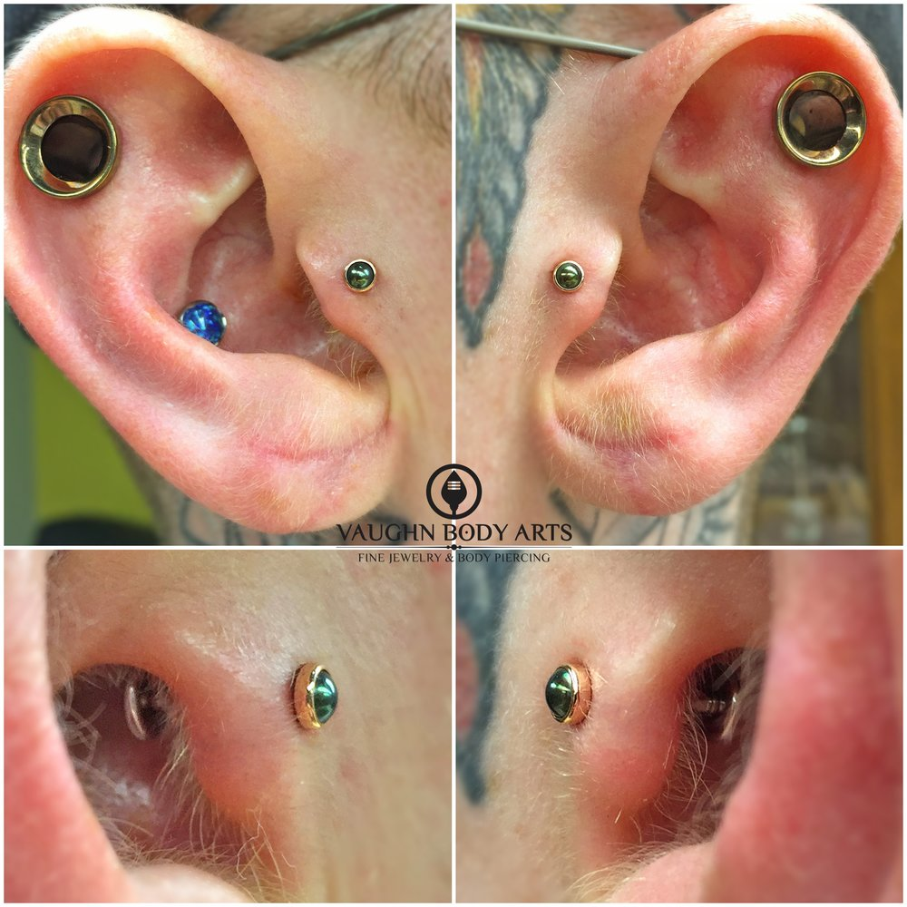 Paired tragus piercings featuring 14k rose gold and genuine black pearl ends from BVLA.