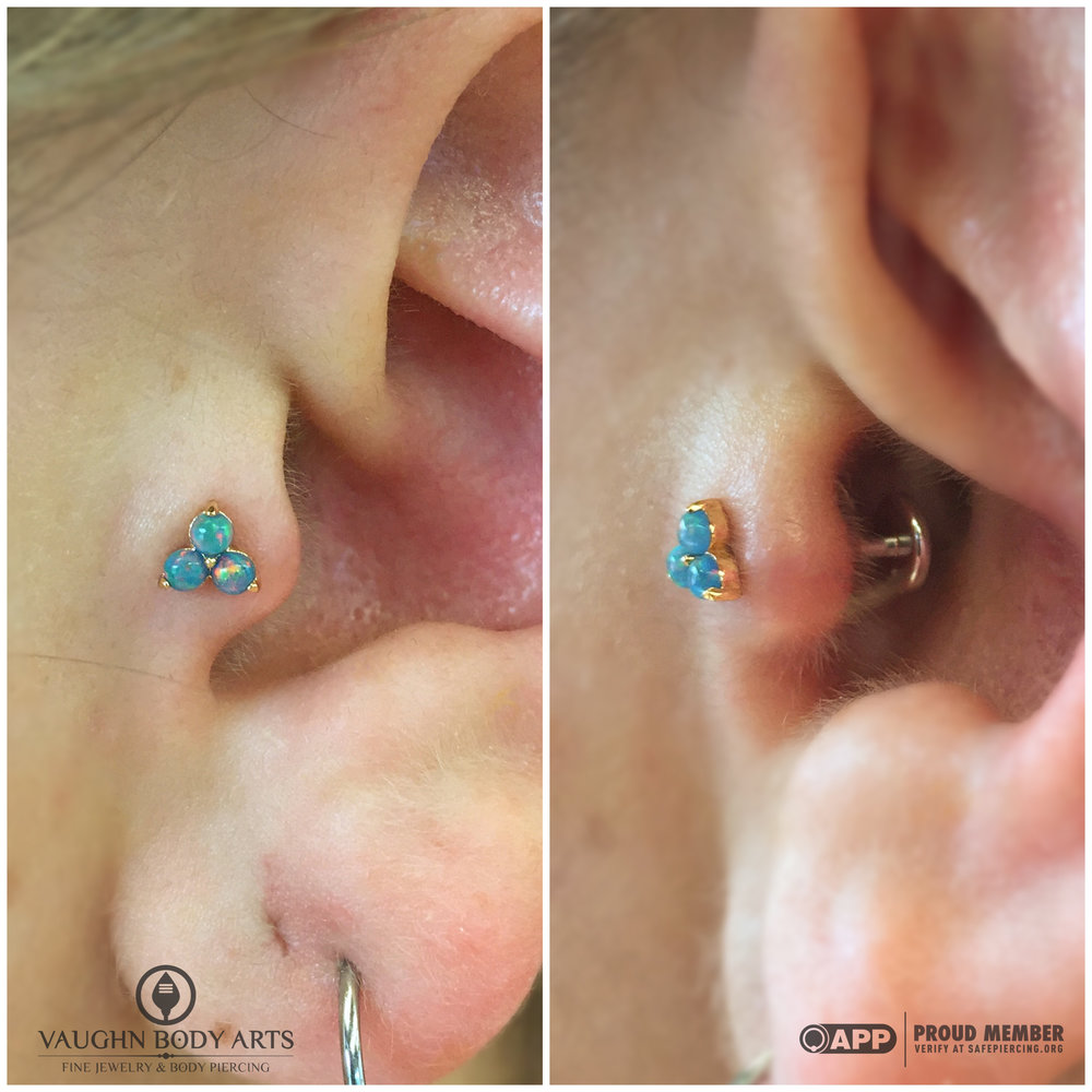 "Tragus piercing with an 18k yellow gold and opal ""Trio"" end from Anatometal."
