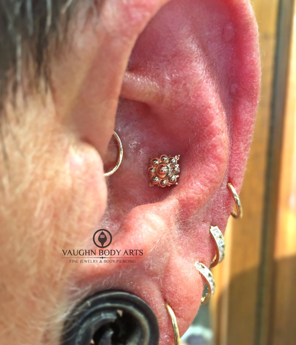 "Conch piercing featuring a 14k white and rose gold ""Angela"" end from BVLA."