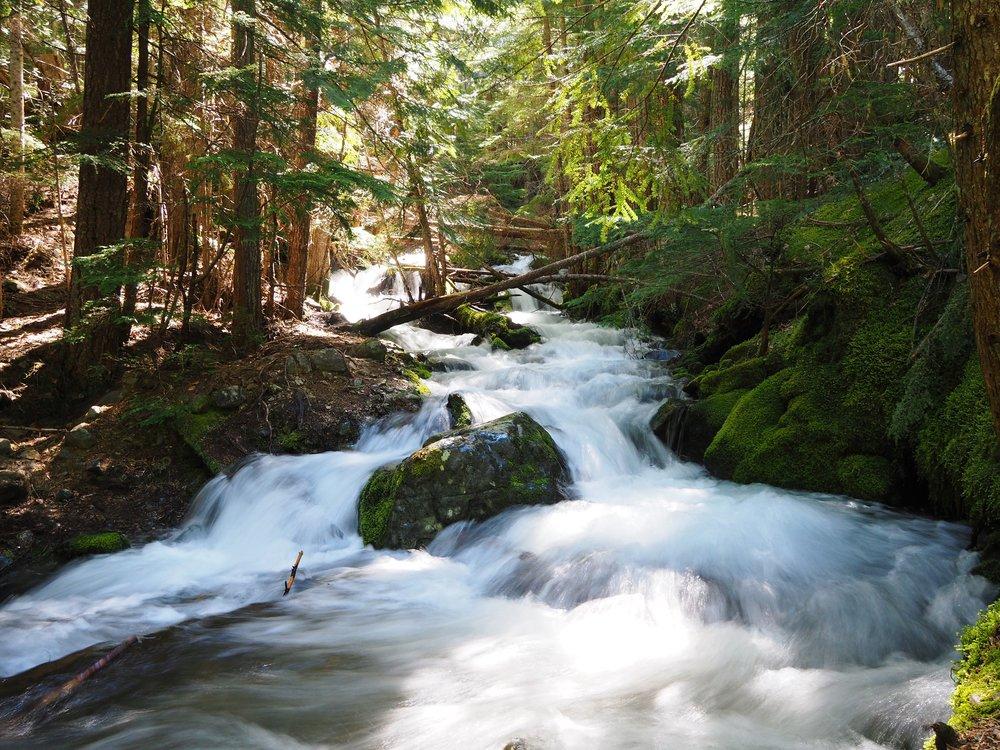 Mount Ranier National Park, Washington