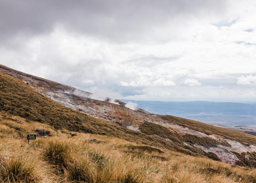 Krys x New Zealand-55.jpg