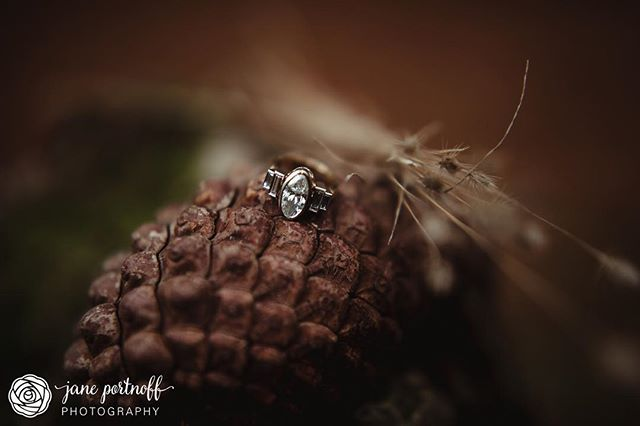 When you're a gemologist and a jeweller, your fiancé let's you design your own ring. And what a ring it is!! 😍💍 ⠀⠀⠀⠀⠀⠀⠀⠀⠀ ⠀⠀⠀⠀⠀⠀⠀⠀⠀ ⠀⠀⠀⠀⠀⠀⠀⠀⠀ ⠀⠀⠀⠀⠀⠀⠀⠀⠀ ⠀⠀⠀⠀⠀⠀⠀⠀⠀ #janeportnoffphotography #adelaidehillsphotographer  #adelaidephotographer  #silvertonoregon  #weddingphotographer #engagementphotographer #engagementsession  #ido #gemologist  #jeweller  #customengagementring  #forestphotography #gorgeousring #bridetobe #ringshot