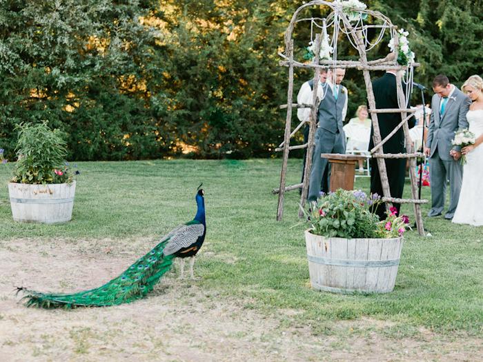 Kimberli+Caleb Wedding Blog FINAL-43
