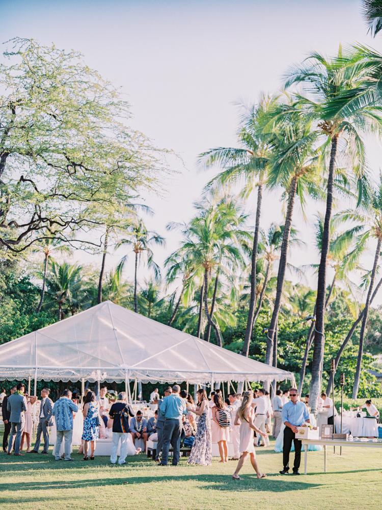 Mauna Kea Hawaii Wedding-59.jpg